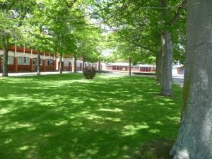 Orb Garden