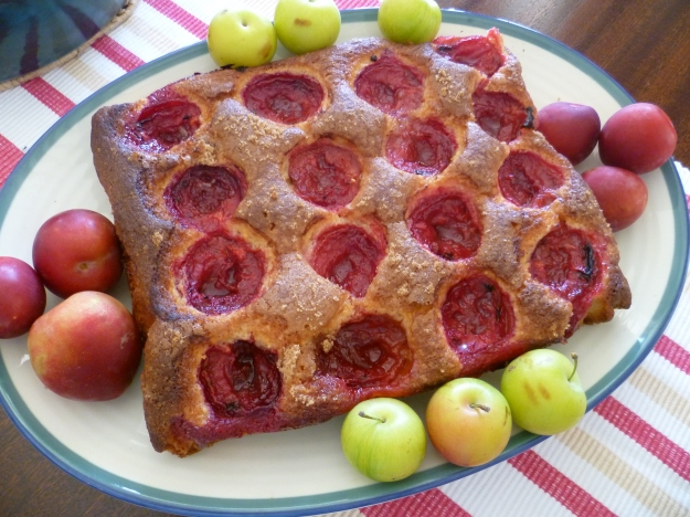 Plum coffee cake
