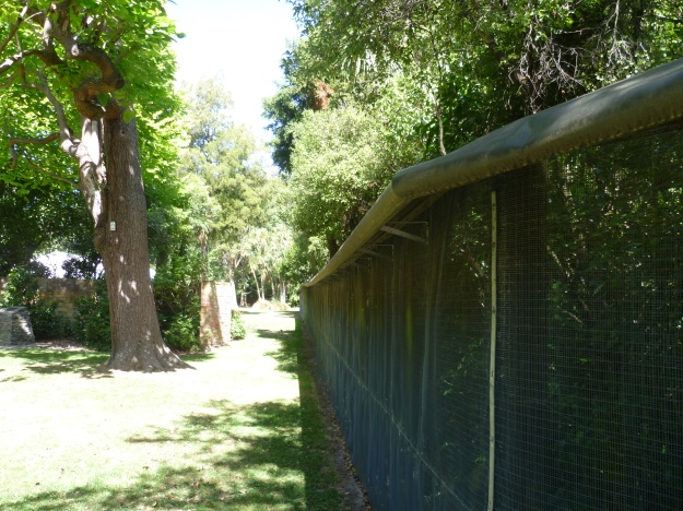 Predator proof fence