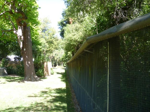 Predator proof fence