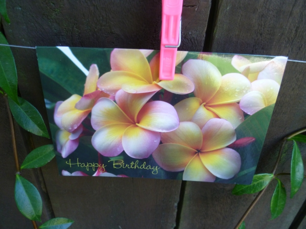 Memories of Frangipani