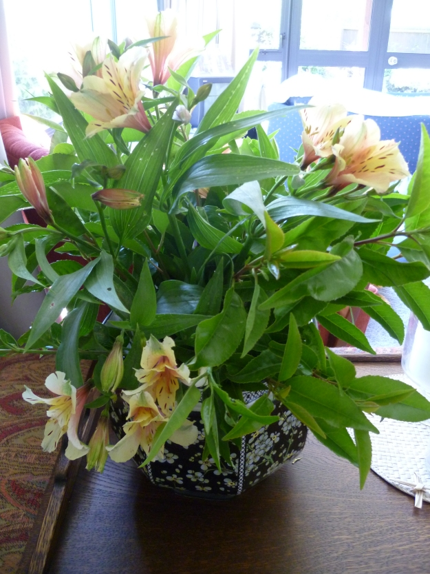 Peruvian Lily and Portuguese Laurel
