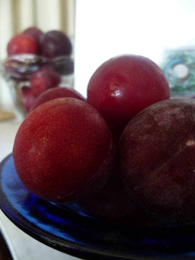 Laden with Plums