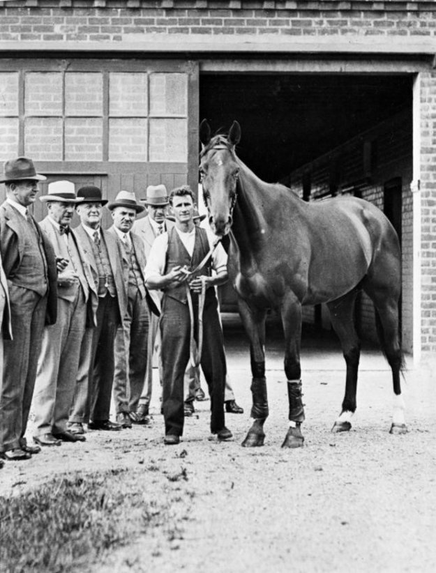 Phar Lap at Trentham Racecourse. Making New Zealand :Negatives and prints from the Making New Zealand Centennial collection. Ref: MNZ-2372-1/2-F. Alexander Turnbull Library, Wellington, New Zealand. http://natlib.govt.nz/records/23120509