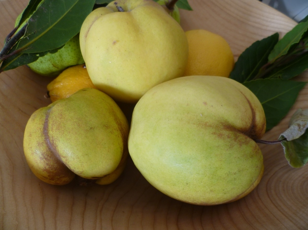 Quinces, faire  and fulsome