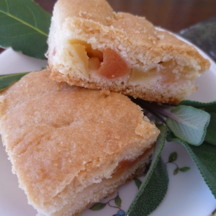Apple and Quince Shortcake on Aynsley Pembroke plate