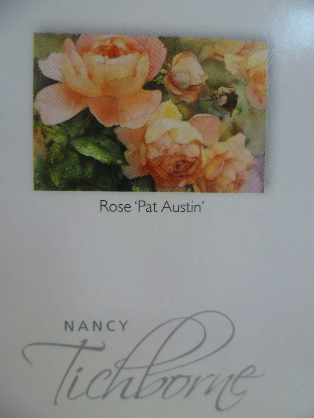 Roses by Nancy Tichbournehttp://www.stuff.co.nz/the-press/christchurch-life/avenues/features/9722237/Nancy-Tichbornes-new-start