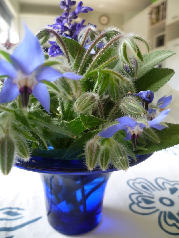 Borage, Salvia and Sage