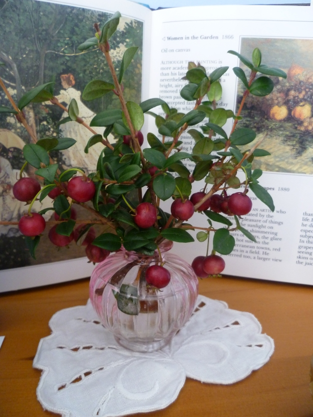 New Zealand Cranberries in pink glass