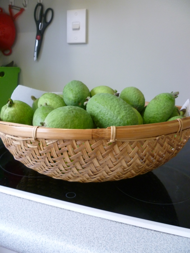 Feijoas (Pineapple Guavas) 2014 Harvest