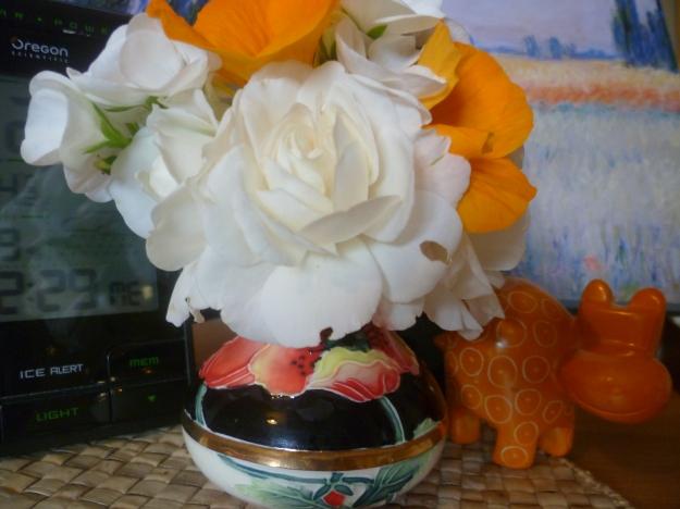 Roses, nasturtium and geranium to ring in the New Year