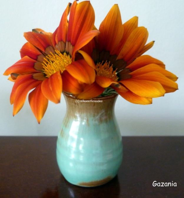 Radiating gazania; like kindness it spreads.