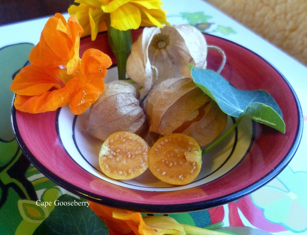 Sweet centered physalis with nasturtium and marigold