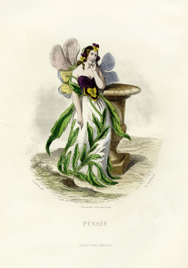 http://www.gardendesign.com/ideas/art-botany-les-fleurs-animes  The Pansy from J J Grandeville's The Flowers Personified 1847