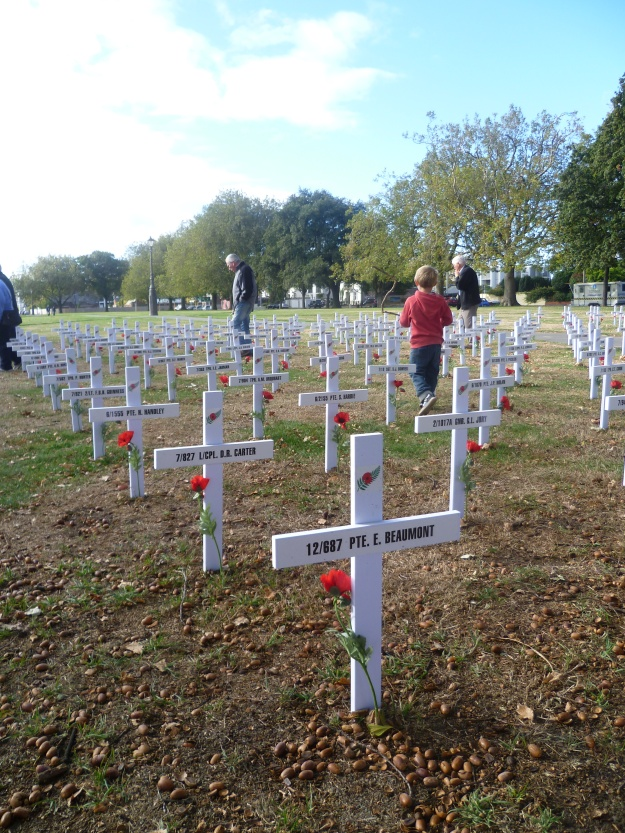 Canterbury Province Field of Remembrance, Cranmer Square, 2015