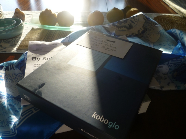 My Koboglo eReader prize, complete with sticky fingerprints.