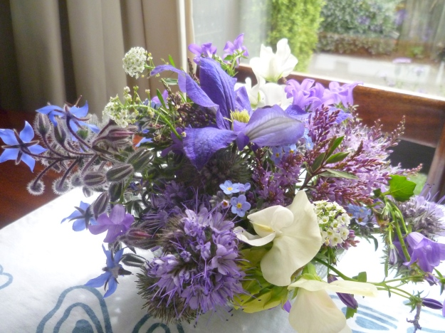 A Spring 'Blue' : for outstanding performance to the sweet peas, hebes, phacelia, borage, forget-me-nots, alyssum, and clematis.